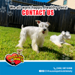 We all want happy, healthy pets. Contact us.