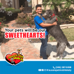 Your pets will be our sweethearts!