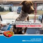 En Aussie Pet Mobile tenemos profesionales, dispuestos a consentir tu mascosta!