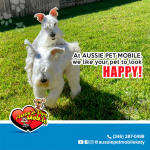 At Aussie Pet Mobile we like your pet to look happy!